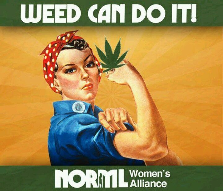 About Us | NORML Womens Alliance