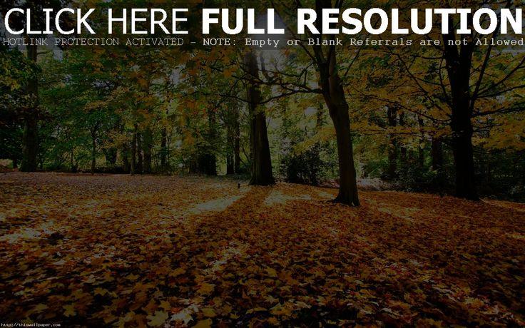 Free Autumn Desktop Wallpaper Backgrounds  Wallpaper  1920×1200 Fall Themed Desktop Backgrounds | Adorable Wallpapers