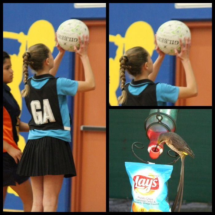 Clarissa Herbst having a  Lays sportipedia moment with netball