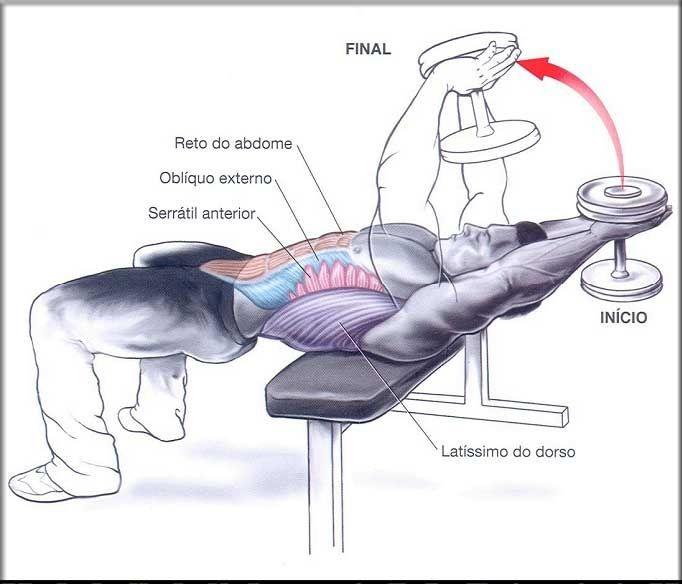 Pullover Para o Abdômen | Dicas de Musculação
