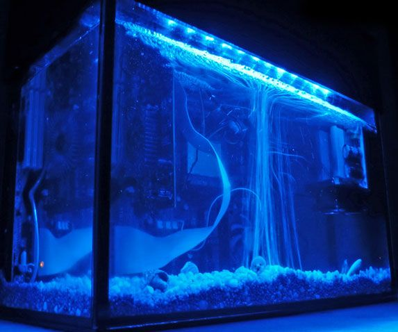 Run a monstrous gaming rig submerged in this aquarium style computer case. Offering extreme cooling for your computer hardware components, the aquarium computer case is an overclocker's dream, and is sure to be a head turner at any LAN party.