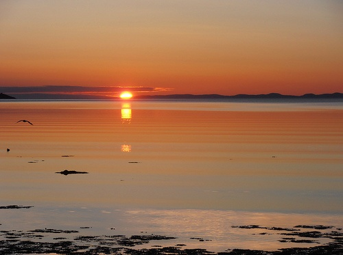 Canadian Environment Week, June 3-9, 2012 Spring Sunrise in the Shearstown Estuary, Bay Roberts, NL Canada