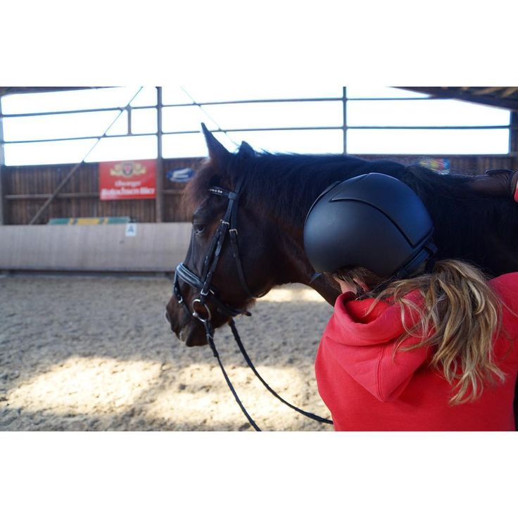 Beside a lot of cuddling and kissing we're actually training very hard💪🏽 My Trainer say: Dylara is really 🔙🔛🔝and this makes me so happy❣️❣️❣️this girl is my best friend, my soulmate, my partner in crime my everything. She makes my world complete❣️❣️❣️ habt alle einen tollen Donnerstag und fühlt euch gedrückt 👩❤️💋👩👩❤️💋👩 #dylaras #riderfashion #TeamRF #love #lovemygirl #happybobbl #happyathlete #bestgirl #soulhorse #soulsisters #betterhalf #seelenpferd #herzenspferd…