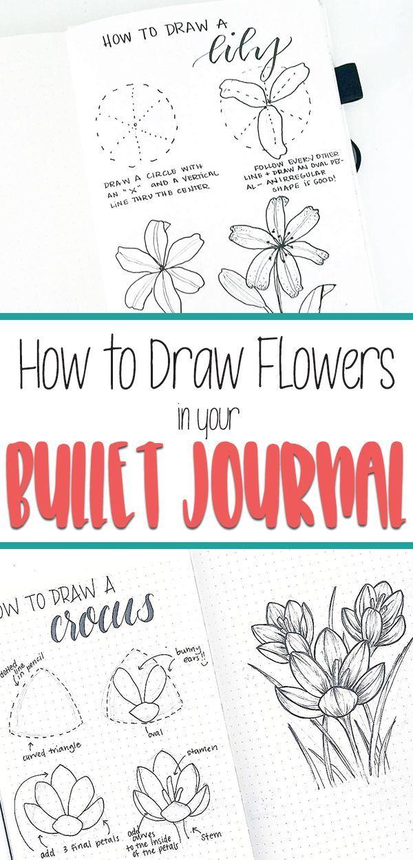 Flower Drawing Learn How To Draw Beautiful Flower Doodles For Your Bullet Journal Spreads Step By Step Drawi Flower Doodles Flower Drawing Bullet Journal Art