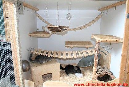 Exemple de cage pour chinchillas