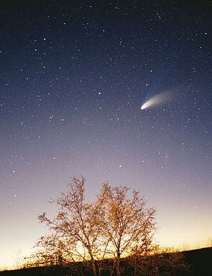 Komeet - Wikipedia