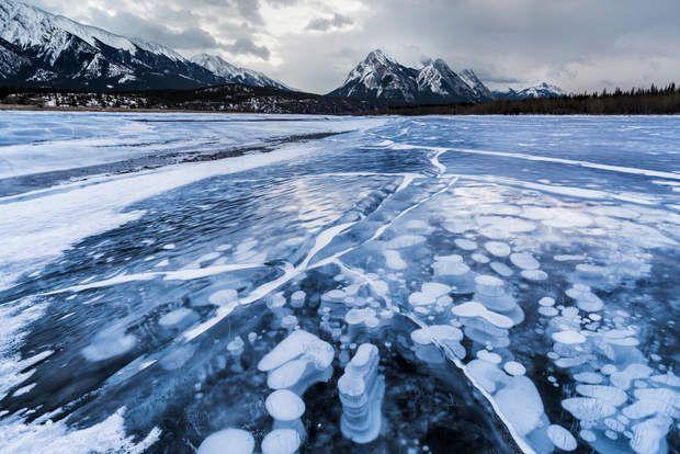 Un lac constellé de bulles gelées au Canada - En hiver, d'étonnantes colonnes blanches apparaissent sous la surface du lac artificiel Abraham, au Canada. Elles sont en réalité constituées de bulles de méthane émises par les plantes qui couvrent le fond du plan d'eau. Elles gèlent en remontant à la surface, qui est plus froide que le fond.