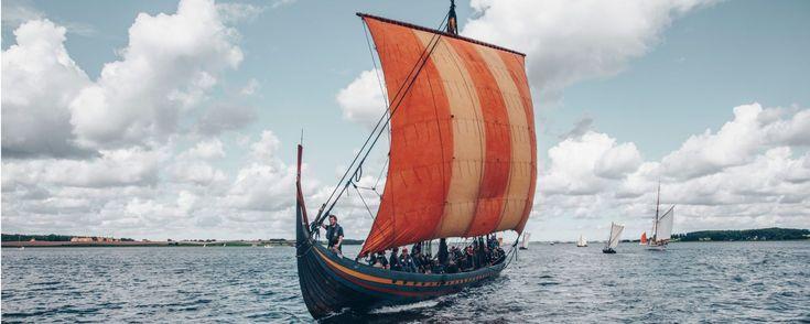 The Danish Vikings
