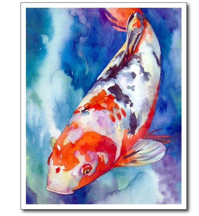 255 best images about koi on pinterest watercolors koi for Koi fish swimming