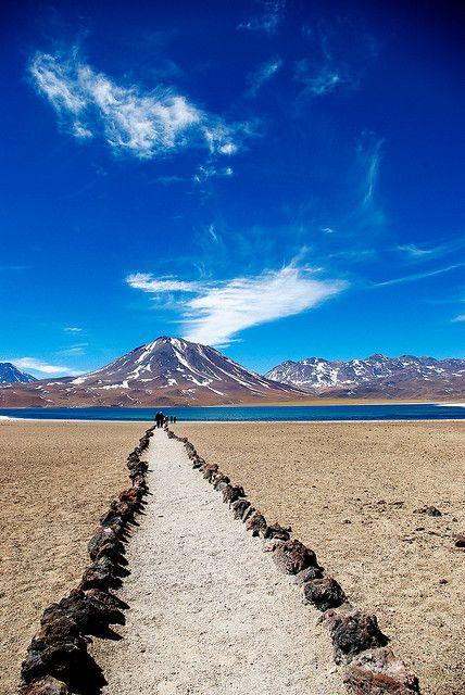 Lagunas altiplánicas (Atacama)