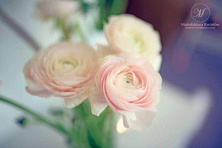 #flower #flowers #pink #white #roses #basket #compozition #elegant #style #love #flowerdesign #florist #flowershop #kwiat #kwiaty #roz #biel #roze #kompozycja #koszyk #elegancki #styl #miłość #kwiaciarnia #manufakturakwiatow