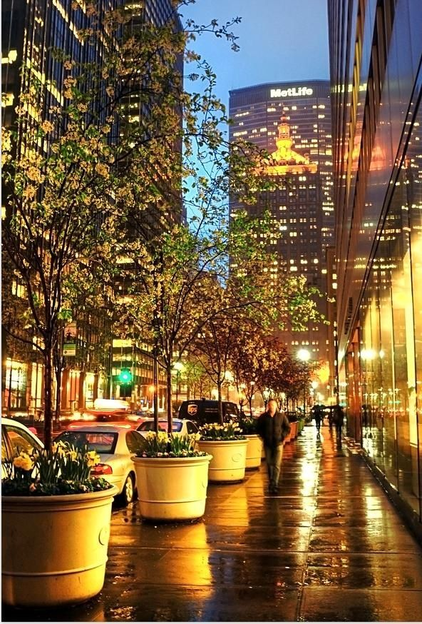 Bright lights in the city, would just love to walk through there. Just Gorgeous