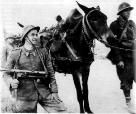 Front tunisien, automne 1942  Artillerie de montagne à dos de mulet. Le soldat au premier plan est armé d'un pistolet-mitrailleur allemand de récupération.