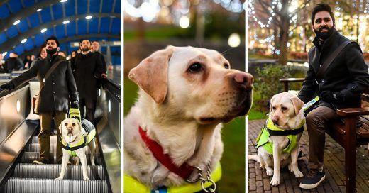 Ciego instala #GoPro a su perro guia y grabó la indiferencia del mundo a las personas ciegas - https://infouno.cl/ciego-instala-gopro-a-su-perro-guia-y-grabo-la-indiferencia-del-mundo-a-las-personas-ciegas/