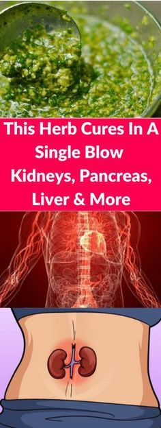 This Herb Cures In A Single Blow: Kidneys, Pancreas, Liver and More