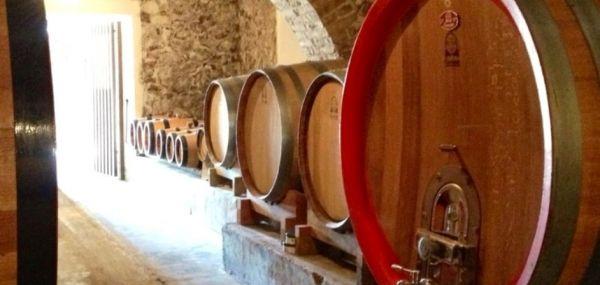 Il vino del sabato: Figlio di una terra benedetta: lo Chardonnay di Nicoletta De Fermo - Vino - World Wine Passion