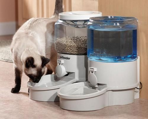 Automatic Cat Feeder for vacation only because George would eat himself fat if left to his own device every single day. HaHa