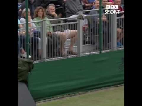 These Wimbledon players weren't too impressed at a bird stopping play in...