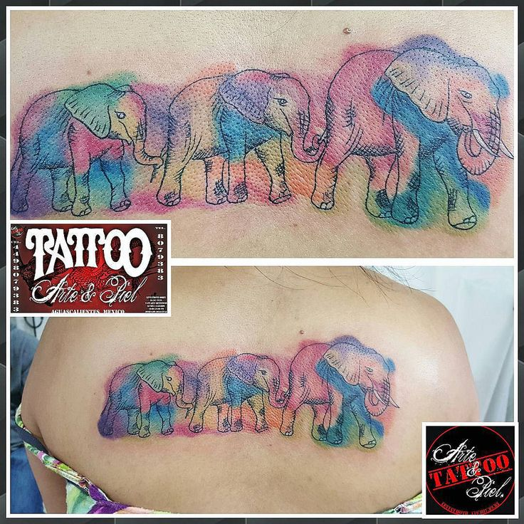 #elephant #watercolor #elefantes #acuarela #espalda #tattooarteypiel #tatuajes #artisticos #aguascalientes #mexico #leviathoth #odhin #isaaccelis #tattooist #tattooart #tattooink #tattoo #neekdnaPROTEC