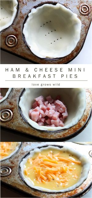 Ham & Cheese Mini Breakfast Pies - a delicious way to start the day! Bake ahead and freeze for busy mornings when you need breakfast on-the-go! | LoveGrowsWild.com
