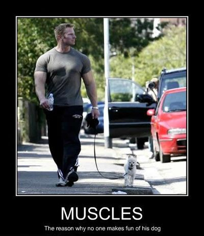 Proof that muscular men are totally softies #MyIdeaOfHawt
