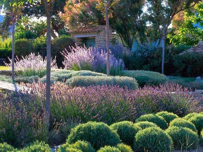 Oltre 25 fantastiche idee su giardini moderni su pinterest progettazione di un giardino - Hoe amenager tuin ...