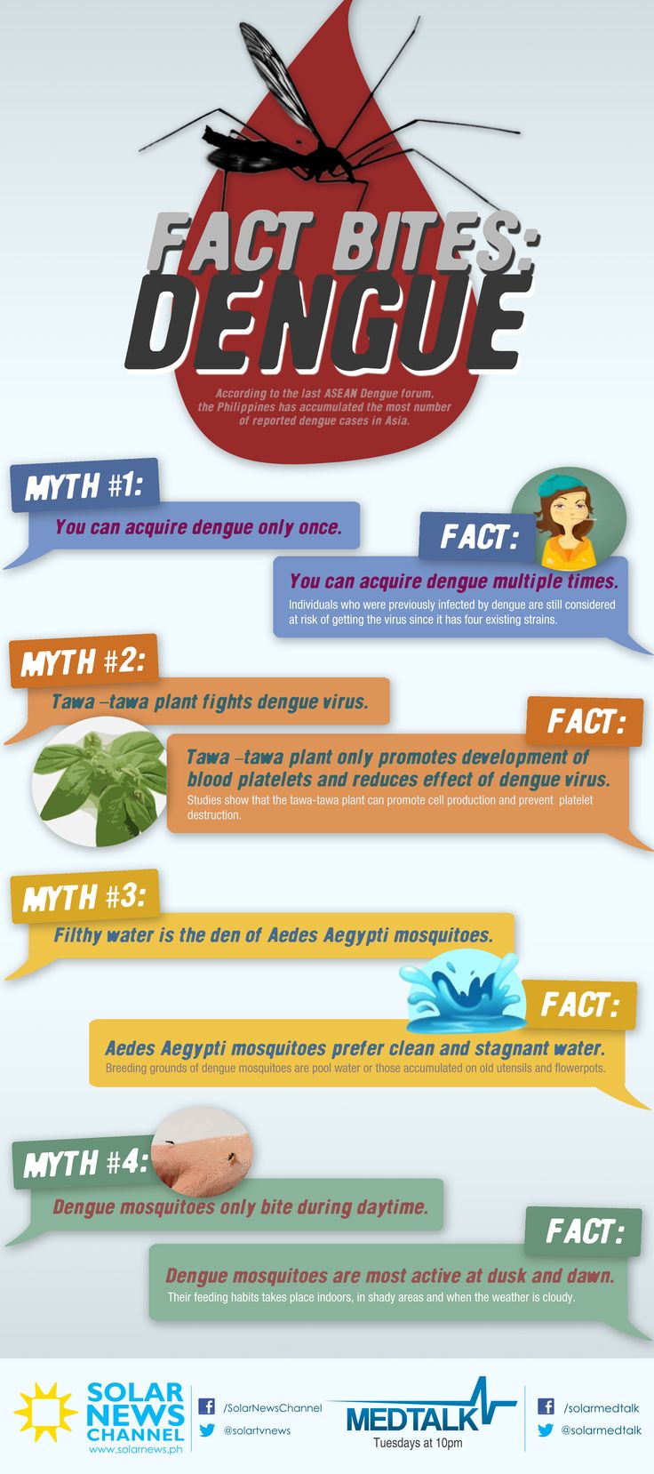 Fact bites: DENGUE. Brought to you by MedTalk and Solar News Channel ‎#dengue ‎#health