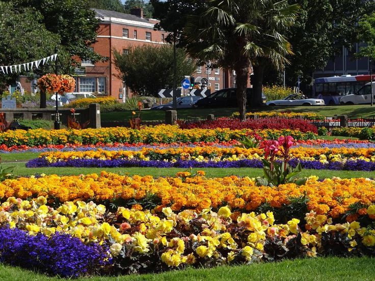 Roy Venkatesh took this photograph of The Queens Gardens ...