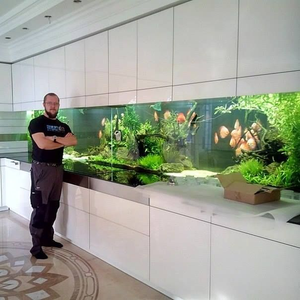Gorgeous Aquascaping Plus Discus Fish. Perfect Addition To A Modern Design,  As Long As Youu0027re Not The One Maintaining It Because That Thing Looks Like  A ...