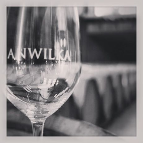 What makes Anwilka so special is that we are free to select the best grapes to put into the blend! #wine #anwilka #vinelovers