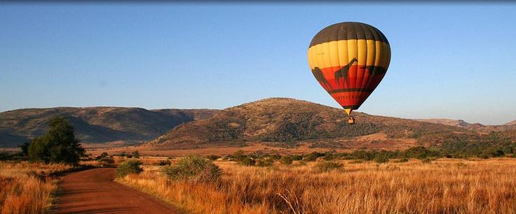Pilanesberg Game Reserve, by Rustenburg, South Africa