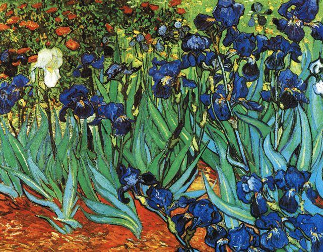 Iris - 1889 - Van Gogh - Opere d'Arte su Tela - Listino prodotti - Digitalpix - Canvas - Art - Artist - Painting