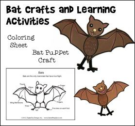 Bat Crafts and Learning Activities for Children from www.daniellesplace.com