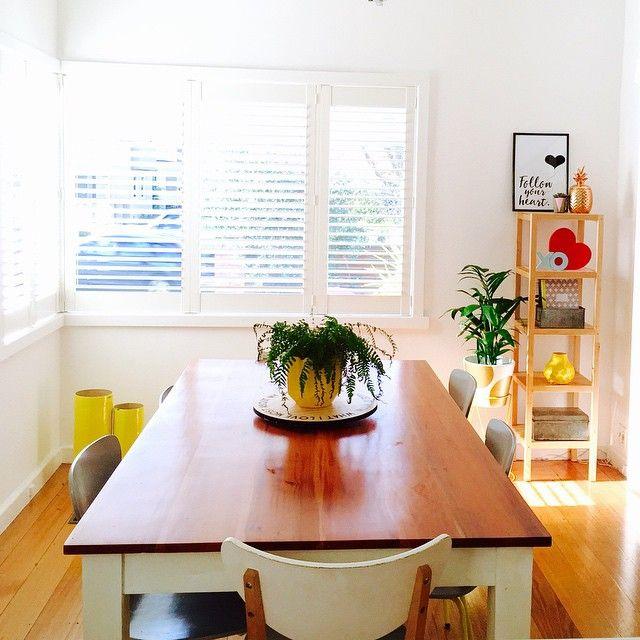 Hello sunshine! Doing a spring clean ready for Nanna to come & stay! #sunshine #myhomestyle #interiorlove #interiors #indoorplants #homeinspo #homeideas #homestyling #interiordesign #interiorstyling #kmartstyling #kmartaddictsunite