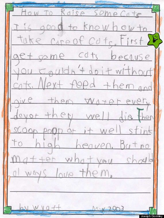 Wyatt's assignment was 'write a descriptive story.' So he did. According to the Huffington Post, Wyatt has three cats named Rapunzel, Spock and Lady Gaga.