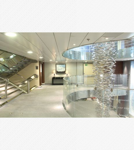 Scabetti | Installations | Shoal - Stainless Steel  #Saga #Cruise #Fish #Scabetti #Steel