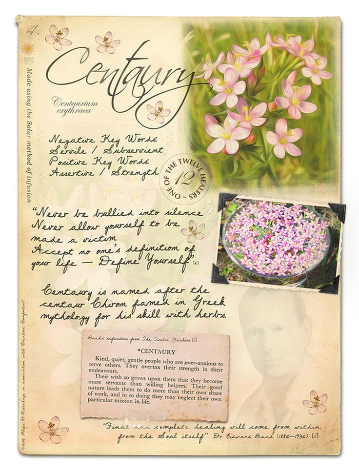 Centaury Bach Flower Picture Card                              …