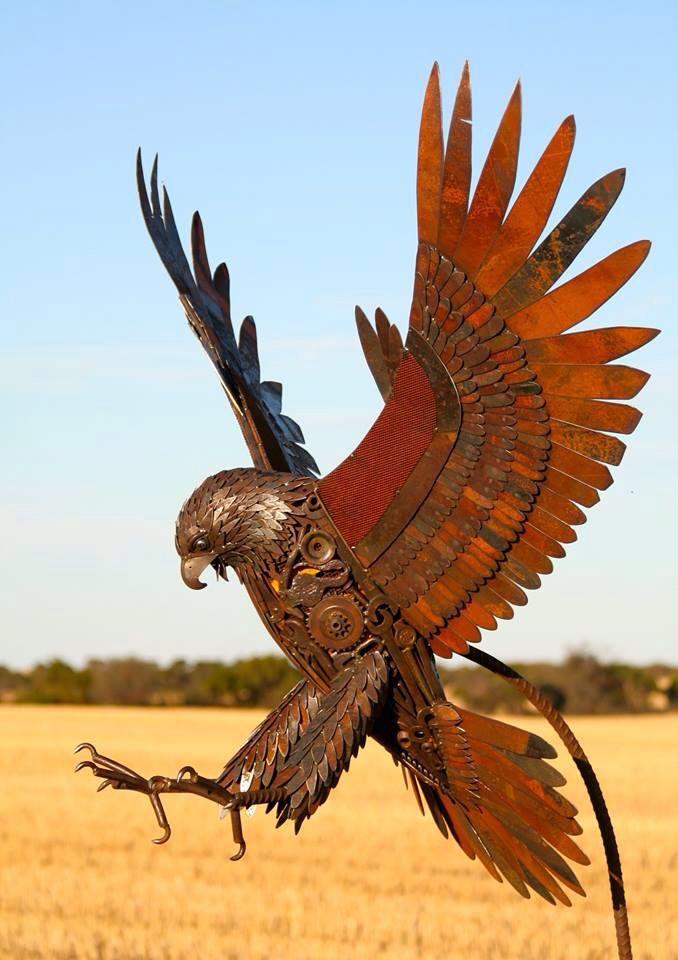 """""""The Narembeen Hawk"""" - Jordan Sprigg Sculptures"""