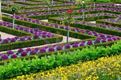 Beautiful vegetable garden designs beautiful vegetable for Beautiful vegetable garden designs