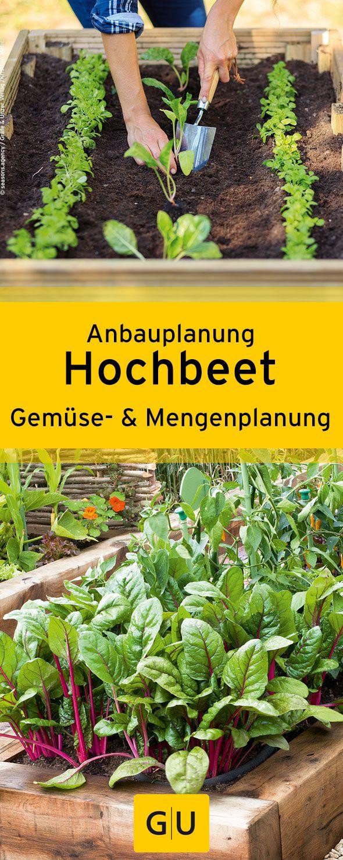 """Gärtnern im Hochbeet: Wir verraten euch alles über die Anbauplanung und welches Gemüse ihr in welchen Mengen einplanen solltet. Alle Tipps findet ihr in der Leseprobe zum Buch """"Hoch das Beet!"""".⎜GU"""