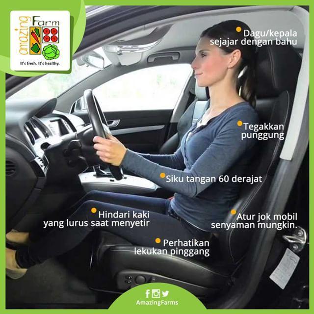 Berkendara dengan Sehat dan Nyaman - Tidak Ingin Meninggal Saat Mudik? Inilah…