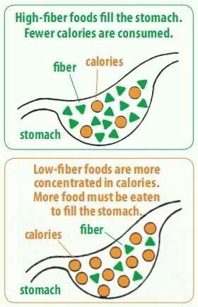 high fiber diet many health benefits Many whole grains are good sources of dietary fiber, which we all need most refined grains contain little or no fiber most refined grains contain little or no fiber dietary fiber can help you improve blood cholesterol levels and lower your risk of heart disease, stroke, obesity and even type 2 diabetes.