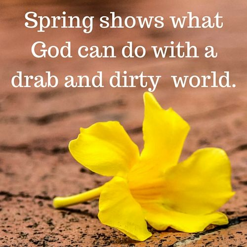 65 Spring Quotes And Sayings With Images