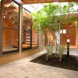 埼玉県入間市・大きなもみじのある家|波乗り亭の部屋 家の中心にある中庭