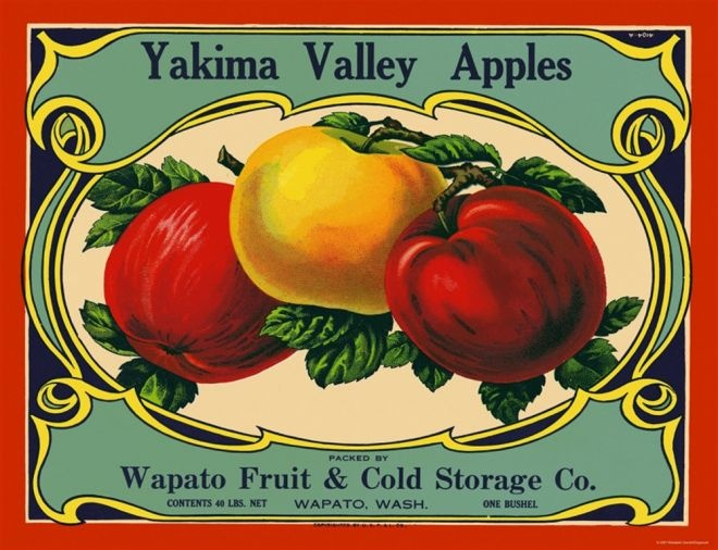 211 Best Growing Up In Yakima Washington Images On