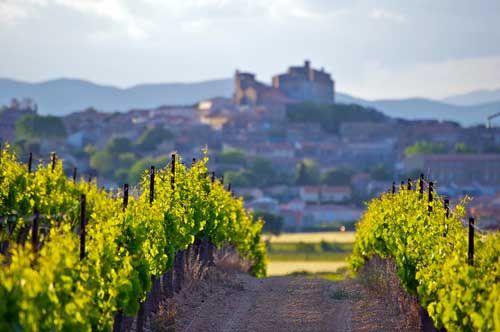 La route des vins du Languedoc-Roussillon vous conduit des Pyrénées à la Vallée du Rhône, entre mer, soleil, montagne et garrigue. Des décors fabuleux et des appellations renommées (Corbières, Fitou, Rivesaltes, Minervois, et bien d(autres). Tous les itinéraires et les visites incontournables : http://www.vinotrip.com/fr/route-des-vins-languedoc-roussillon #Languedoc #Roussillon