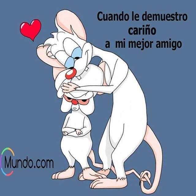 Menciona a tu cebrero gruñon y tu pinky cariñoso #tagyourfriends #pinkyandthebrain #pynkyycerebro #friendship #otherhalf #otramitad #amistad #amistdes #mencionaatusamigos #etiquetaatuamiga #atiquetaatusamigos #mundo #mundopuntocom #meme #memesenespañol
