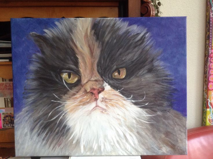 Kat van Carlette, acryl op canvas