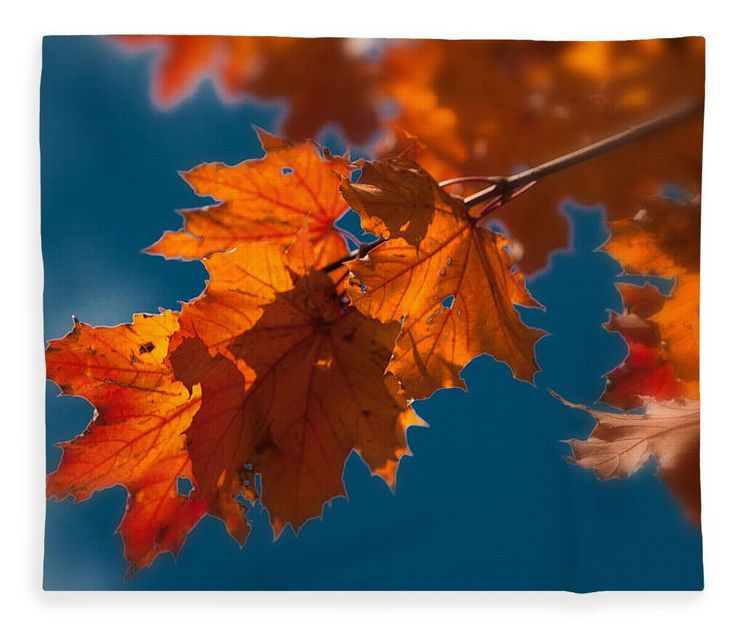 Autumn Foliage New England Fleece Blanket featuring the photograph Perfectly Imperfect Colors by Jeff Folger
