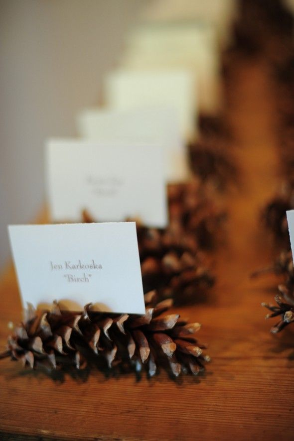 Seating chart idea. Each person's name card is placed in between pine cone spikes with their table name on it. Each table is named after a different type of tree (birch, oak, maple, etc.)